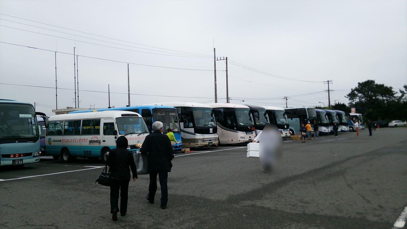 バスたくさん
